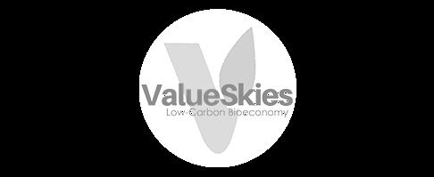 ValueSkies